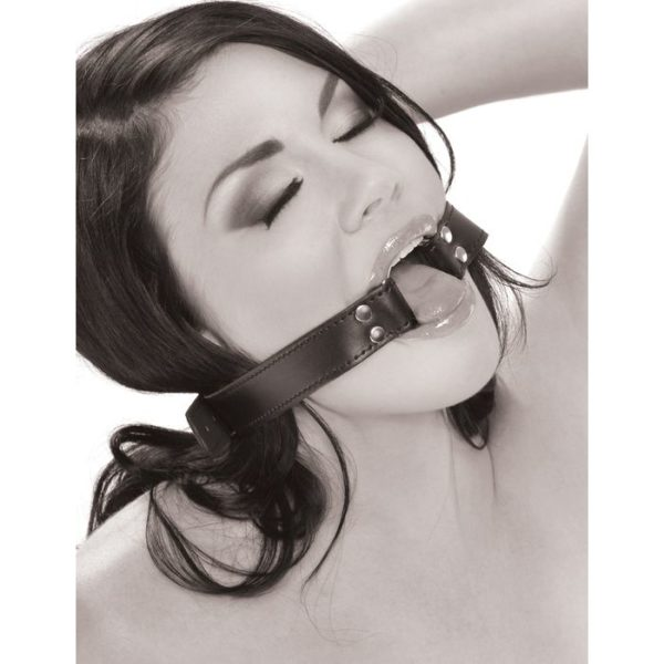 FETISH Fantasy Series Limited Edition O-Ring Gag in Black